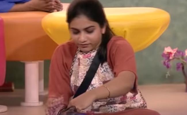 Bigg Boss 3 Telugu Punarnavi Obeyed Bigg Boss Rules - Sakshi