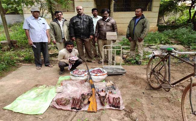 Nallamala Forest Officers Arrested Spatted Deer Hunter In Kurnool - Sakshi