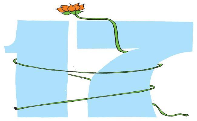 Vardelli Murali Article On Telangana Liberation Day - Sakshi