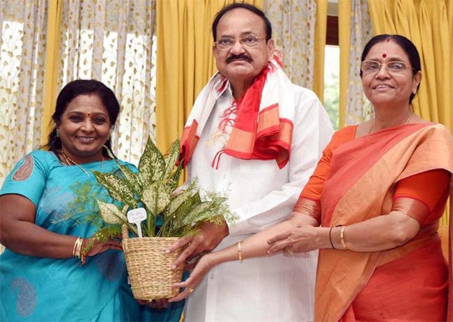Telangana Governor Meet Vice President Venkaiah Naidu - Sakshi