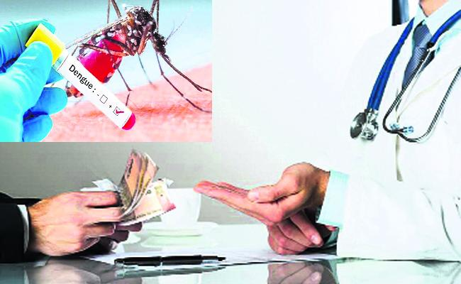 Private Hospital Tests Without Dengue Fever  - Sakshi