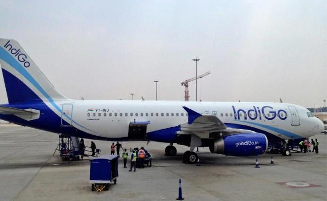 IndiGo forgets luggage of entire Delhi to Istanbul flight, Internet explodes - Sakshi