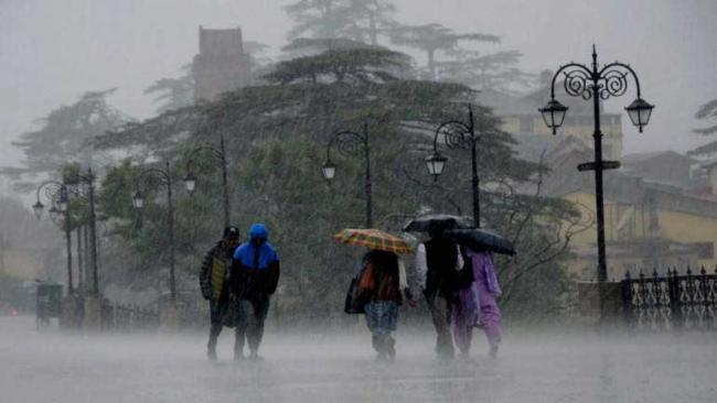 Nearly half of India received excess rainfall - Sakshi