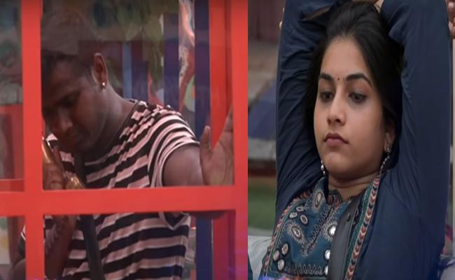 Bigg Boss 3 Telugu Is Punarnavi Sacrifice For Rahul - Sakshi
