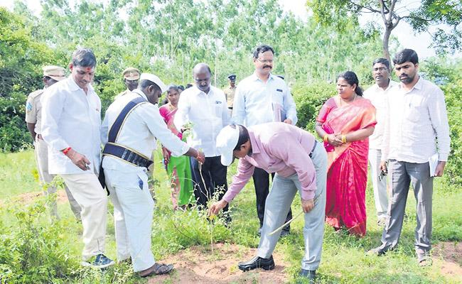 Collector MV Reddy Angry On Keesara Forest Range Officers For Neglecting Haritha Haram Plants - Sakshi