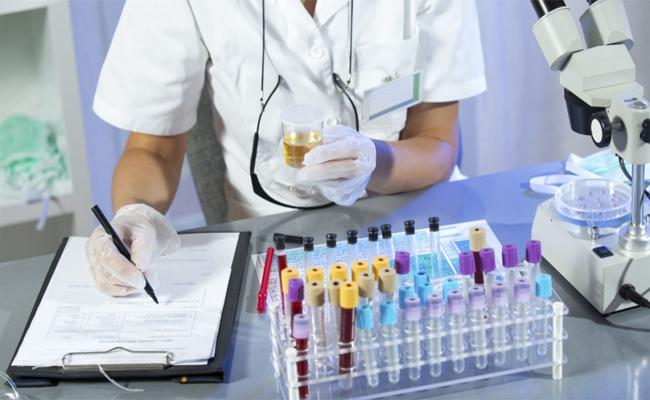 Medal Pharmaceuticals Cheating Government In Prakasam - Sakshi