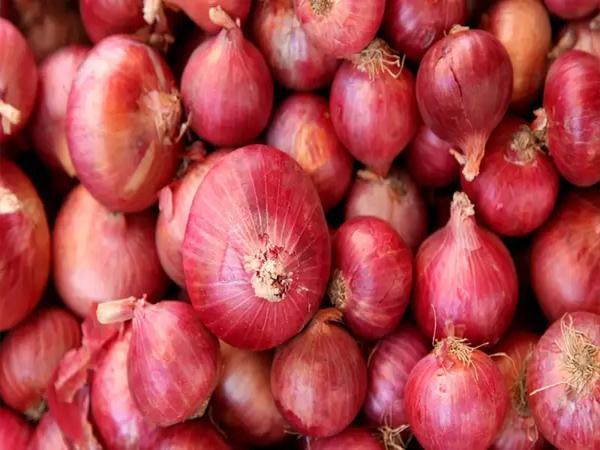 Onions Prices Are Increasing In Kurnool - Sakshi