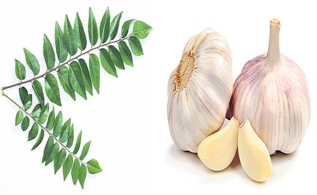 Garlic Reduces Blood Pressure And Keeps Cholesterol In Check - Sakshi