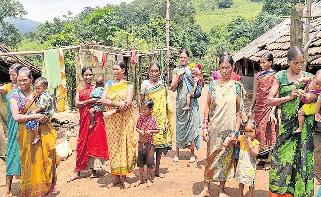 AP Govt Focus on Tribal Area Development - Sakshi