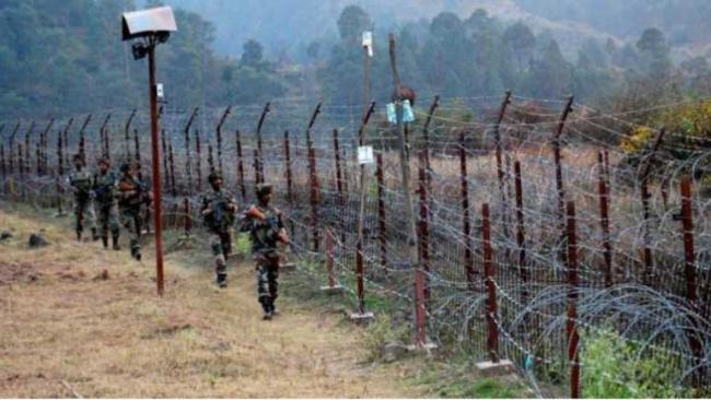16 Animals Die as Pakistan Violates Ceasefire Along LoC in kashmir - Sakshi