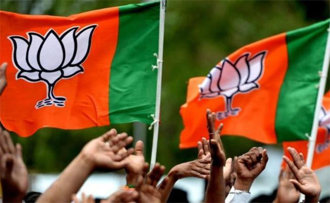 BJP Party Active In Warangal - Sakshi