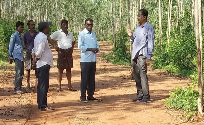DM Lingareddy Inquiries About Wood Smuggling In West Godavari - Sakshi
