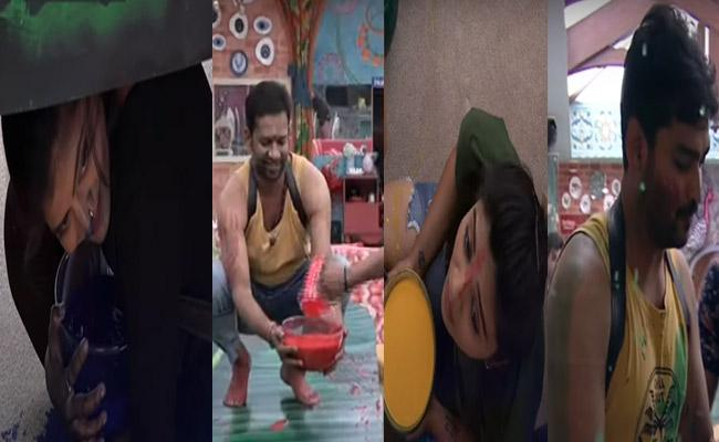 Bigg Boss 3 Telugu Who Is The Next Capatain In 10th Week - Sakshi