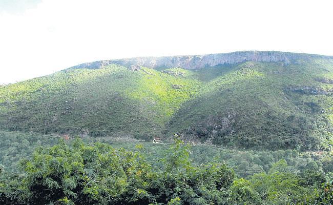AP Governament Cancelled Bauxite Mining Leases In Visakhapatnam - Sakshi
