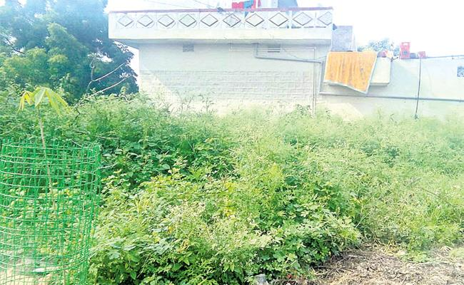 Sarpanch Misbehave With Higher Official In Rangareddy - Sakshi