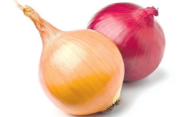 The Price Of Onions Has Gone Up During The Maharashtra And Haryana Elections - Sakshi
