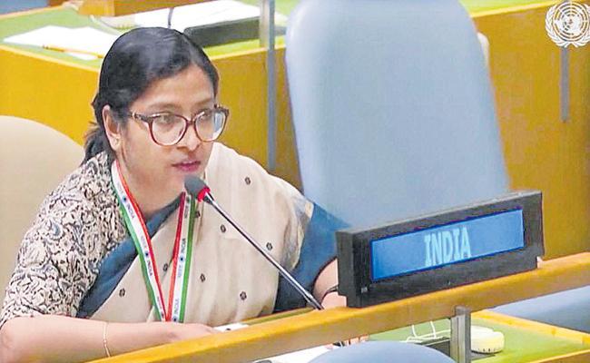 India Slams Pakistan PM Imran Khan At UN Platform - Sakshi