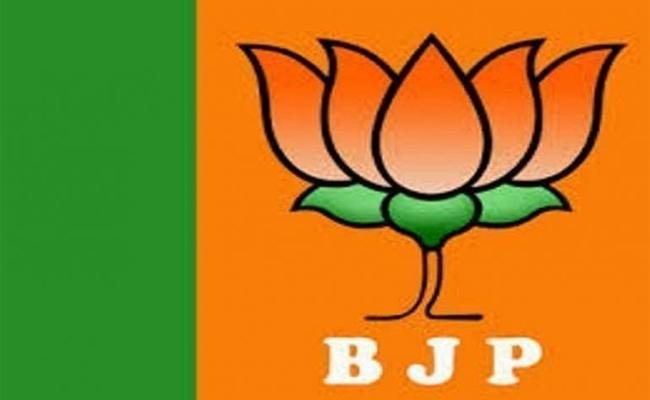 Congress and Janasena party leaders joining into BJP - Sakshi