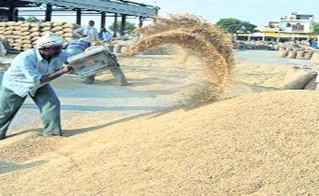 AP Government Helps To Farmers With Price Stabilization Fund - Sakshi