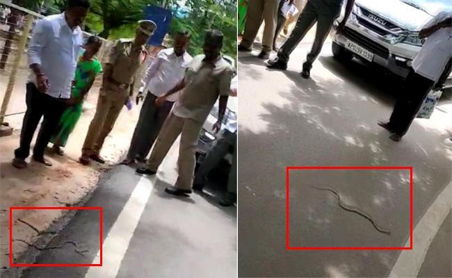 Snake Halchal In Minister Shankar Narayana Meeting At Anantapur - Sakshi