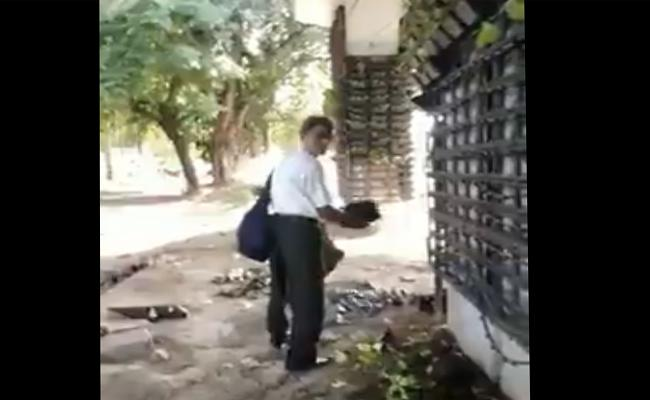 Delhi Man Steals Pot From Vertical Garden - Sakshi
