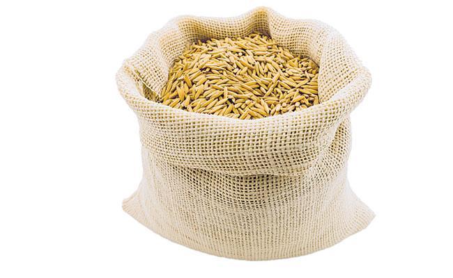 Grain Purchase Start In Telangana Market - Sakshi