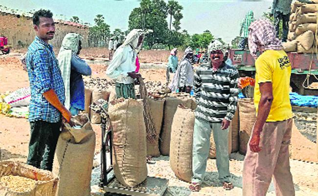 Government Is Ready For Puchsaing Millets In 170 Centers In Karimnagar - Sakshi