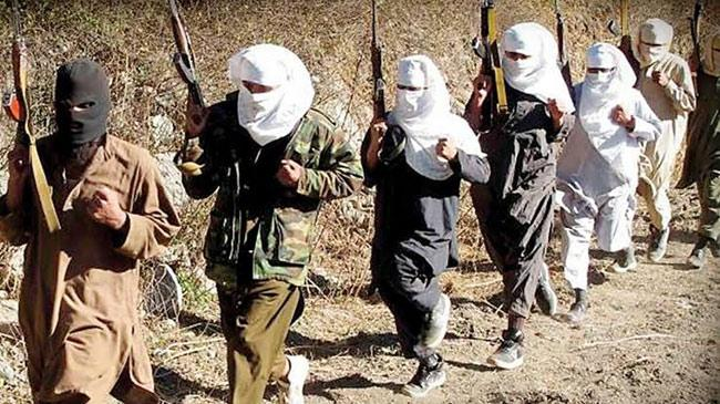 Pakistani Terrorists Entered Kashmir Through Gurez - Sakshi