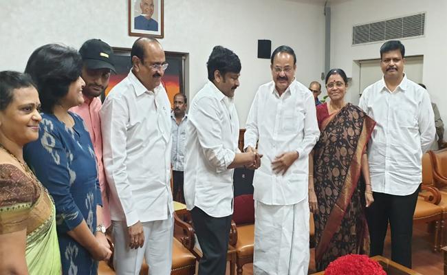 Chiranjeevi Meets Venkaiah Naidu In Delhi - Sakshi