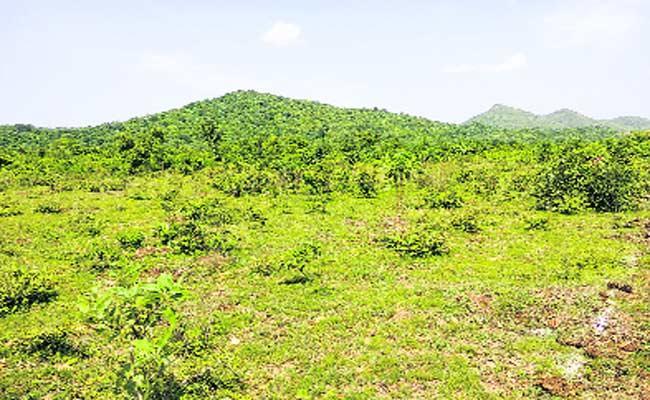 Telangana Government Survey On Land Area In Khammam - Sakshi