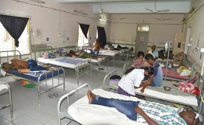 Dengue Fever cases Increased In Krishna - Sakshi