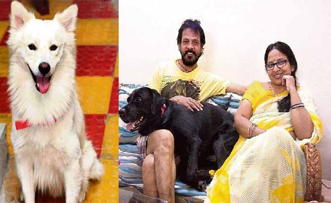 Family Worried About Pet Dog Death in Hyderabad - Sakshi