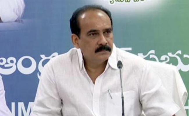 Minister Balineni Srinivas Reddy Appointed AS A Nellore In Charge - Sakshi