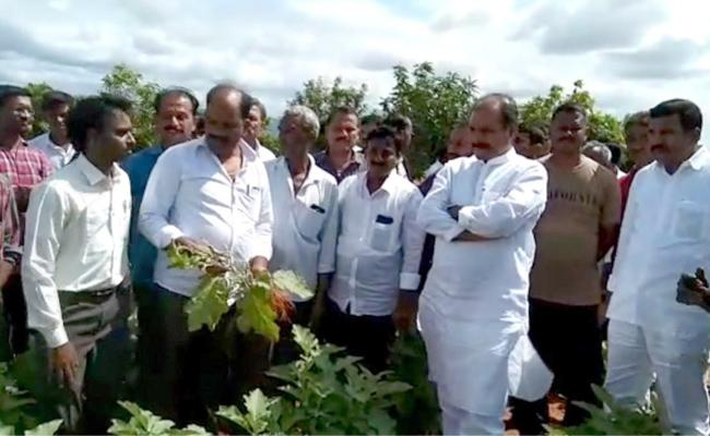 Government Chief Whip Srikanth Reddy Visited the Body of a Farmer Who Committed Suicide - Sakshi