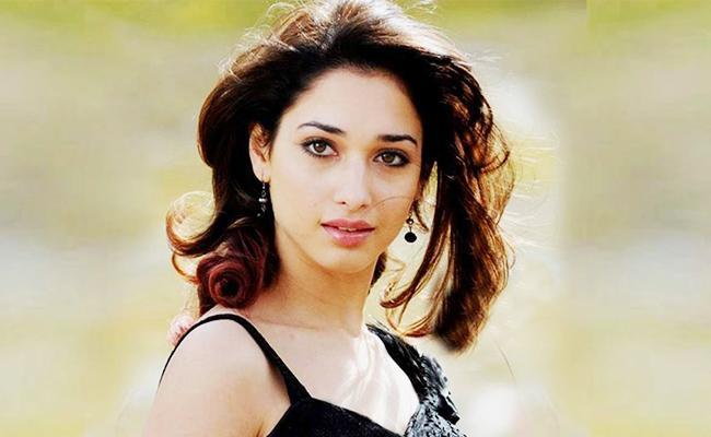 Tamannaah Bhatia Special Interview on Vishal Action Movie - Sakshi