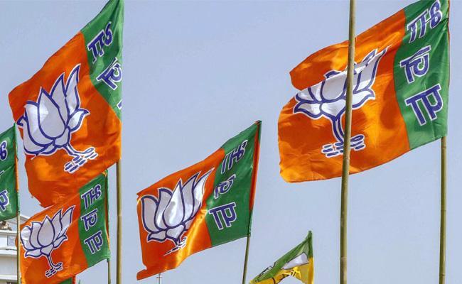 How Jats Votes Impact On BJP In Haryana - Sakshi