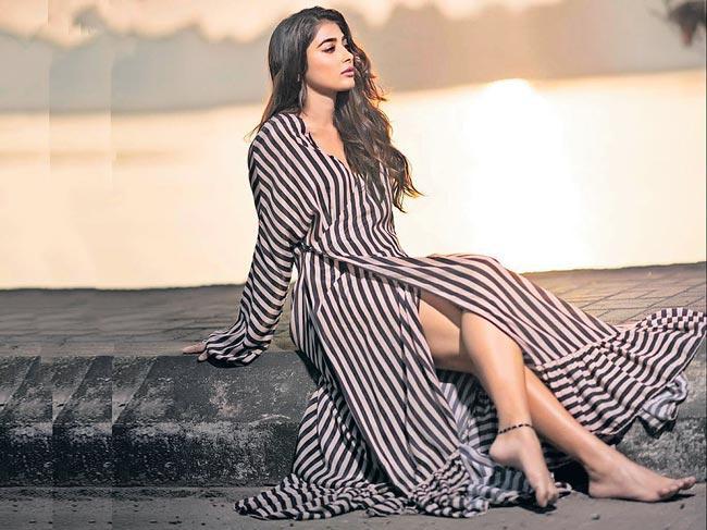 Pooja Hegde opens up on MeToo allegations on Sajid Khan - Sakshi