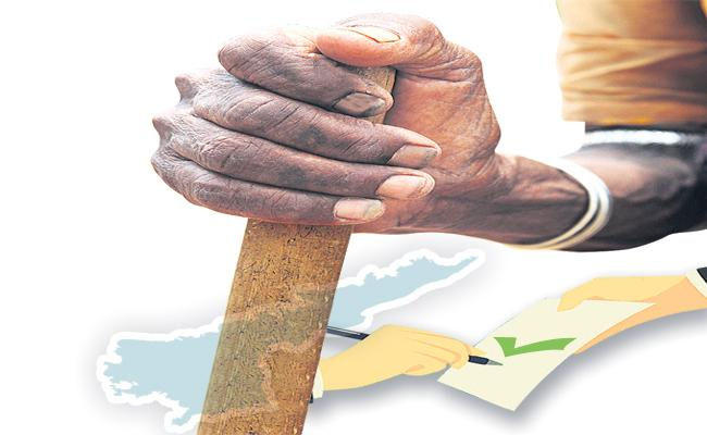 Prepared activity for the grant of new pensions in the state - Sakshi