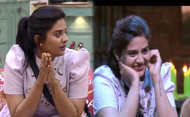 Bigg Boss 3 Telugu: Housemates Reacts Their Fans Tweets - Sakshi