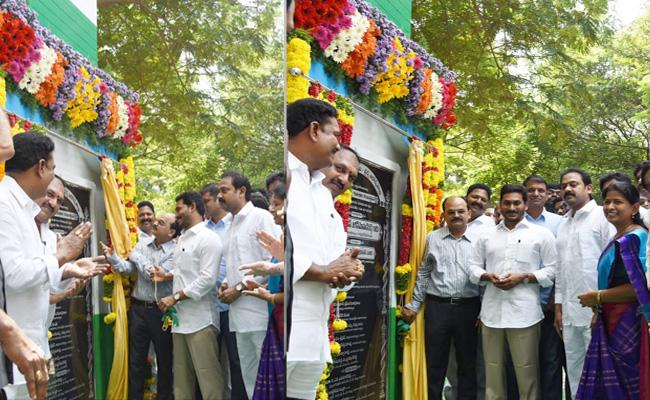 CM Ys Jagan Mohan Reddy Foundation Stone For Medical College in Eluru - Sakshi
