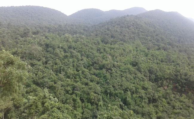 Wild Life Week Celebrates In Prakasam - Sakshi