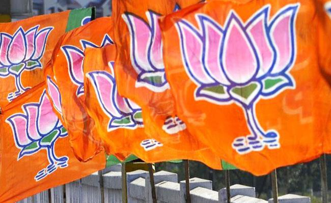 Tamil Nadu BJP Chief Yet Not Decided May Not Contest In By Elections - Sakshi