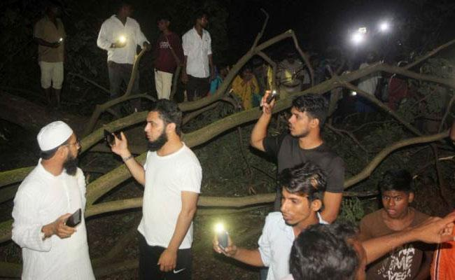 Activists Detained In Mumbai Aarey Colony Over Cut Trees Row - Sakshi