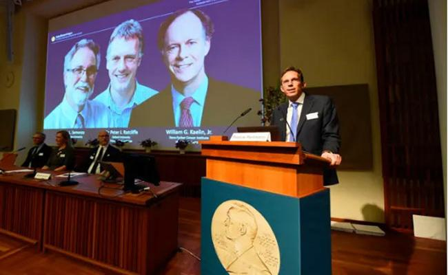 Nobel Medicine Prizes Announced In Stockholm - Sakshi