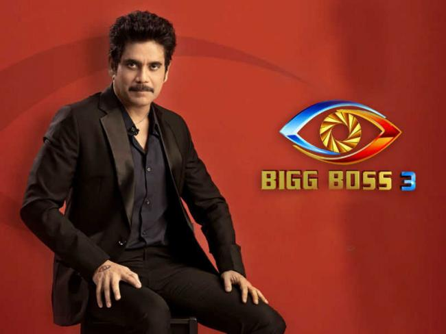Bigboss 3 Telugu 11th Week Updates - Sakshi