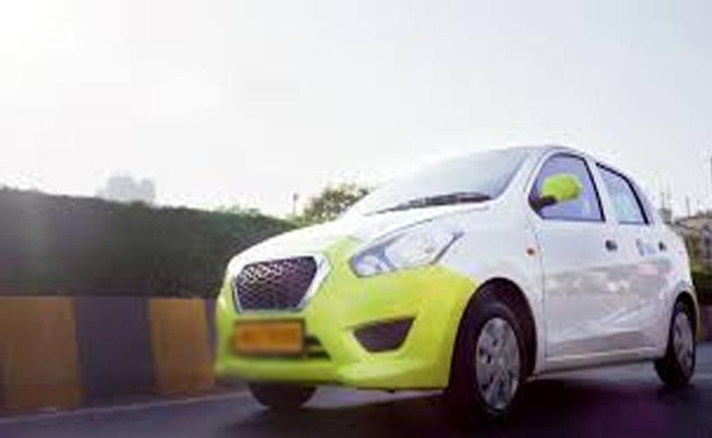 Cab Driver Arrested For Killing Dog In Hyderabad - Sakshi
