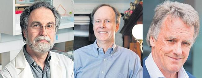 Kaelin, Ratcliffe, Semenza jointly awarded for work on cells, oxygen - Sakshi
