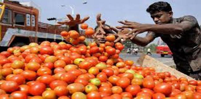 After Onions Retail Price Of Tomatoes Shot Up - Sakshi