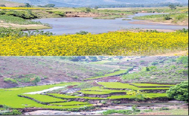 Araku Valley Is A Popular Tourist Spot In Visakhapatnam District - Sakshi