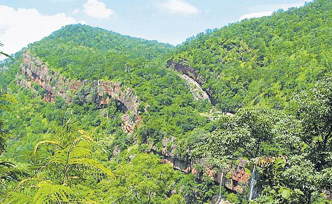 Uranium Mining Permits Canceled In Nallamala Forest - Sakshi